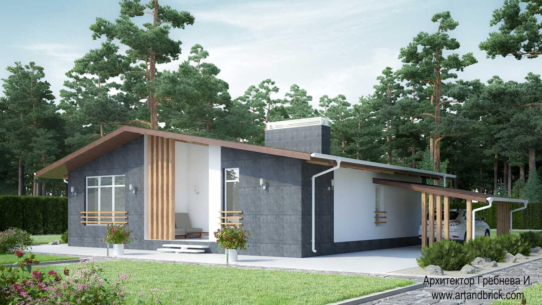 Проект одноэтажного дома – задний фасад. Площадь частного дома – 108,6 кв.м.